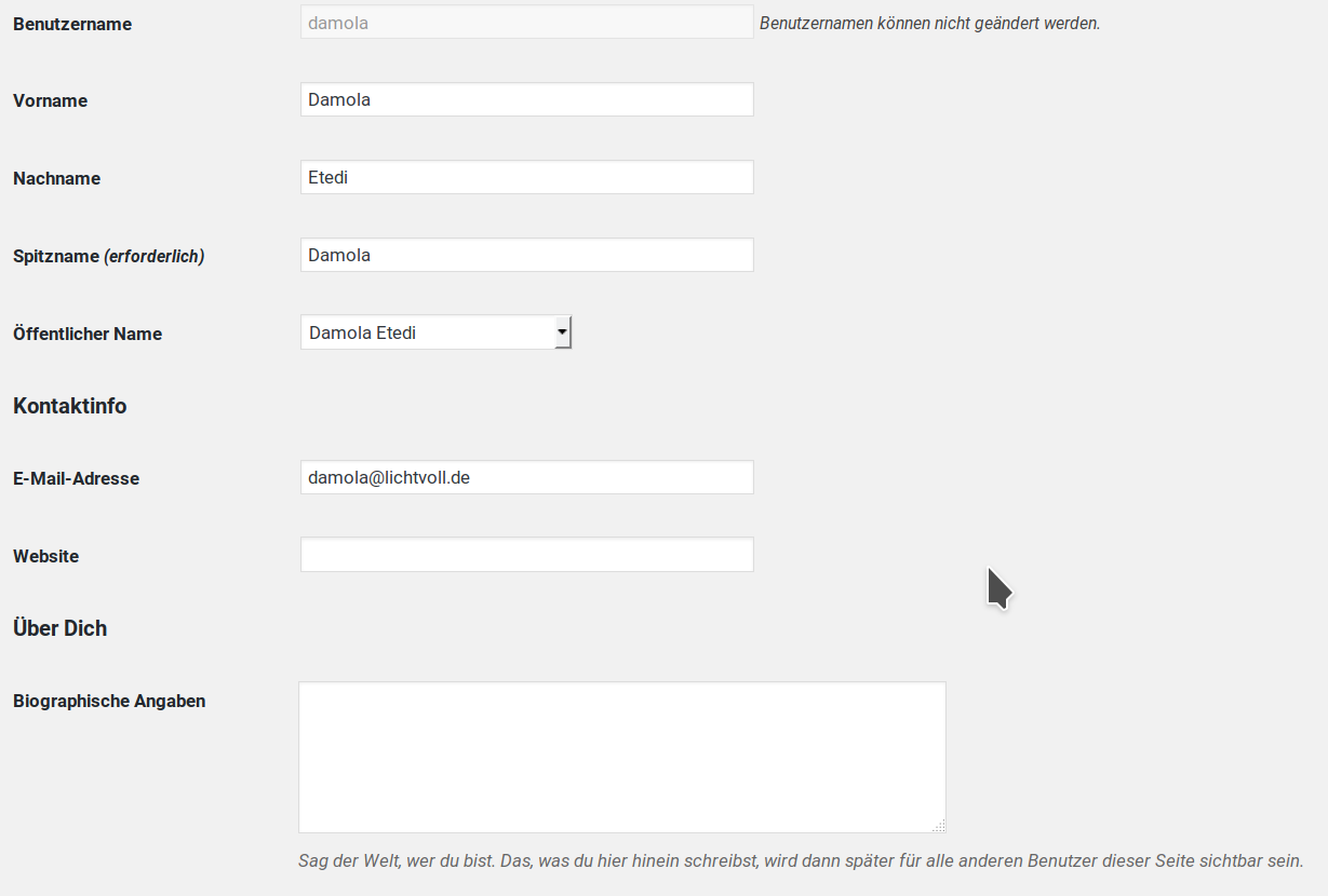 Beispiel für WordPress Profil